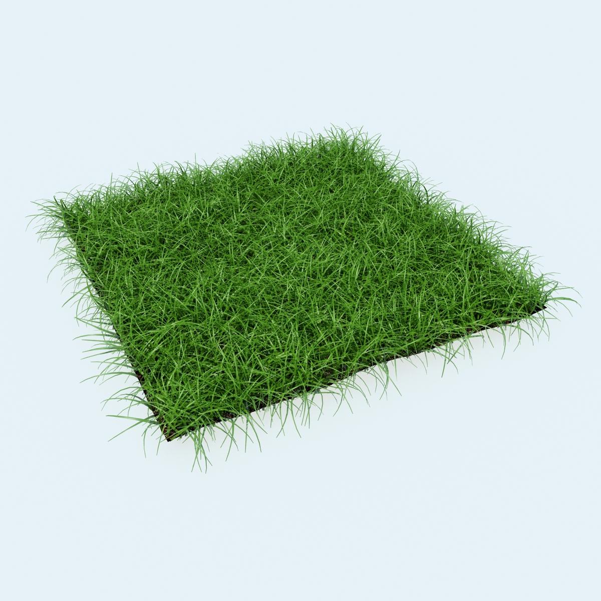 DOSCH DESIGN - DOSCH 3D: Grass