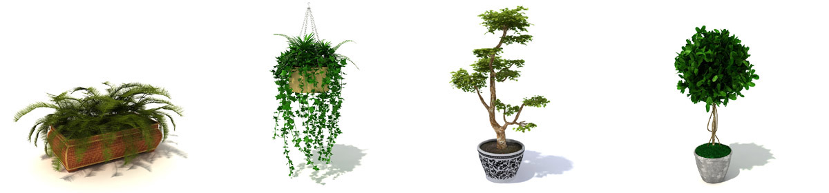 DOSCH 3D Indoor Plants