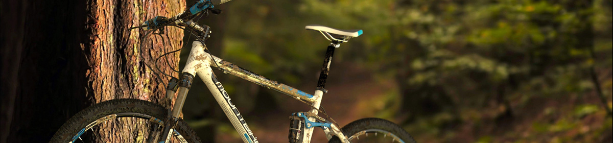 DOSCH 3D: Mountain Bike Details