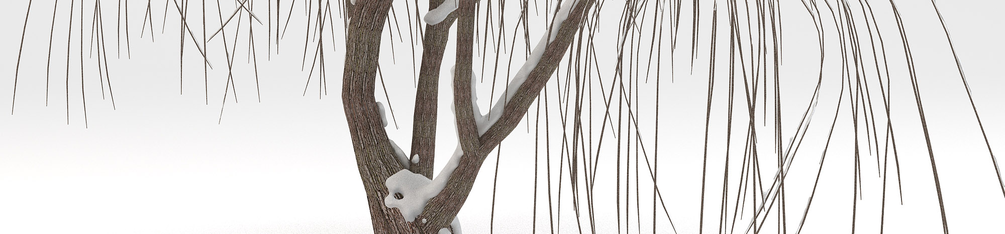 DOSCH 3D Winter Trees
