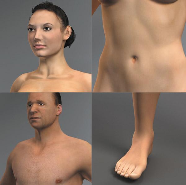 Dosch Design Dosch 3d Human Anatomy Skin