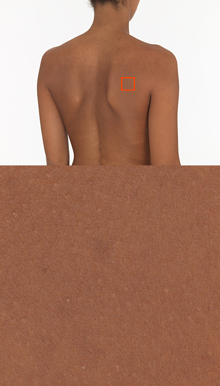 Dosch Design Dosch Textures Sources Female 02