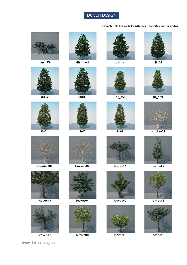 DOSCH DESIGN - DOSCH 3D: Trees & Conifers for Maxwell Render
